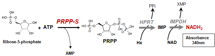 PRPP-S Assay Kit Principle